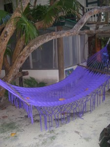my purple garden hammock