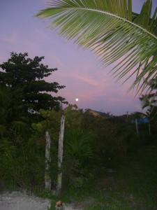 full moon caye caulker
